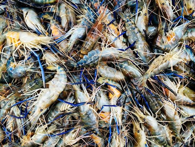 Um monte de camarão