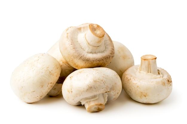 Um monte de cogumelos em branco, isolado.