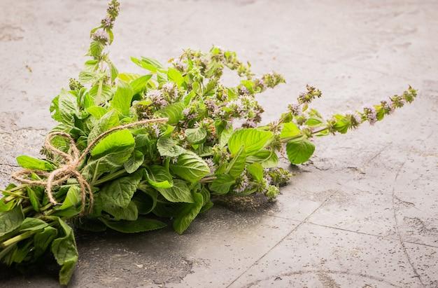 Um monte de hortelã fresca ou erva-cidreira em cinza