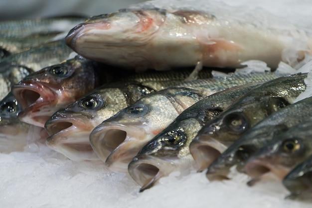 Um monte de peixinhos no gelo no mercado de frutos do mar
