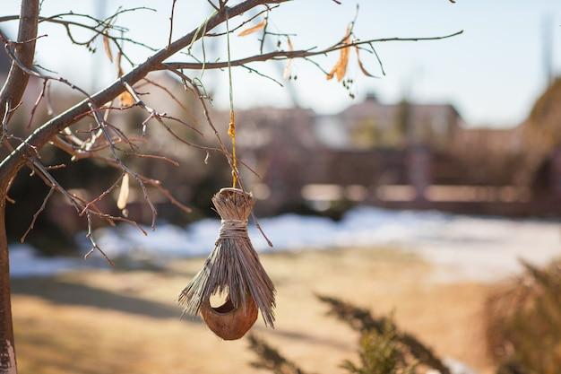 Um ninho de pássaro feito de casca de coco e palha pesa em uma árvore no parque