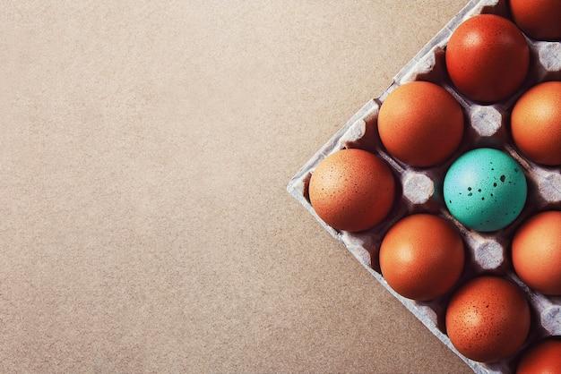 Um ovo azul entre ovos marrons em caixa de papelão, copie o espaço
