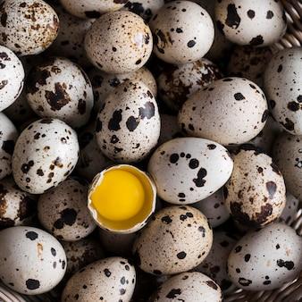 Um ovo de codorna rachado