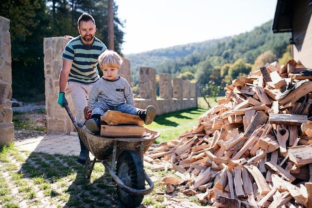 Um pai e filho menino com carrinho de mão ao ar livre no verão, trabalhando com lenha.