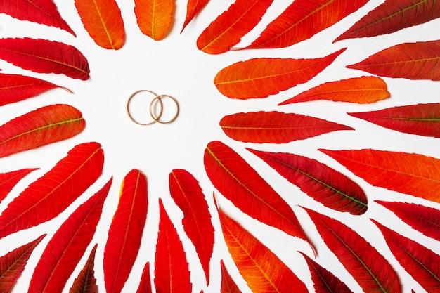 Um par de alianças de ouro em um quadro de folhas de outono coloridas