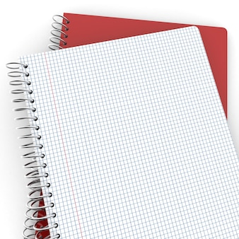 Um par de cadernos, um fechado, o outro aberto mostrando páginas quadriculadas