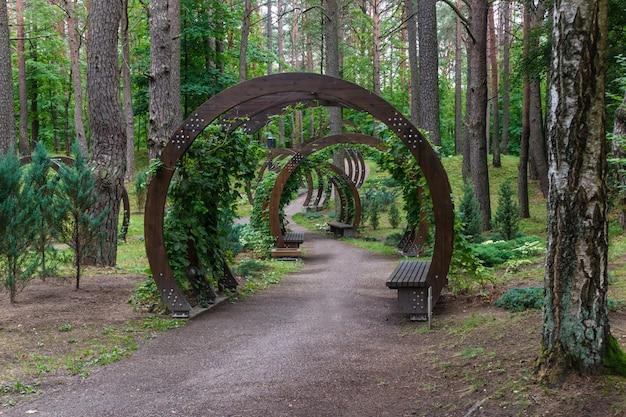 Um parque florestal com grandes árvores e bancos e arcos criativos.