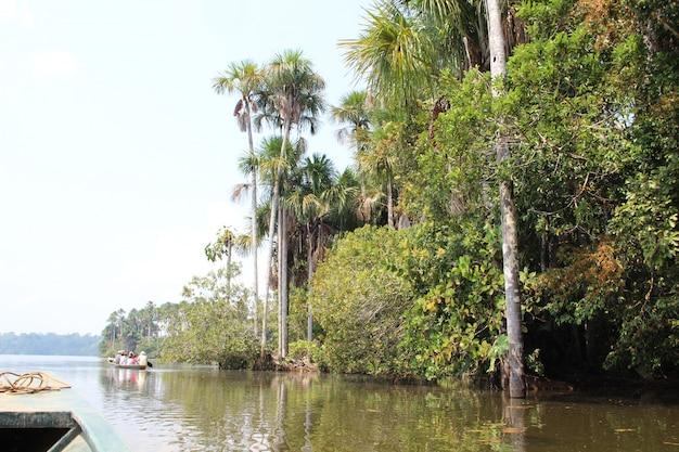 Um passeio de barco pela selva de puerto maldonado. peru