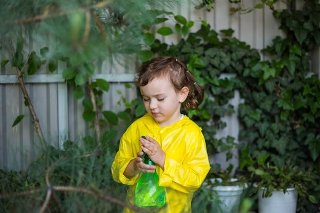 Um pequeno assistente em uma capa de chuva amarela pulveriza plantas na estufa