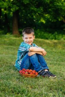 Um pequeno menino bonito está sentado com uma grande caixa de morangos maduros e deliciosos. colheita. morangos maduros. baga natural e deliciosa.