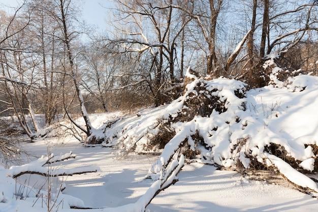 Um pequeno rio cuja água é congelada no inverno, um rio congelado durante as geadas do inverno, neve e geada na natureza no inverno perto de um rio ou lago