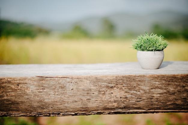 Um pequeno vaso colocado em uma plataforma de madeira