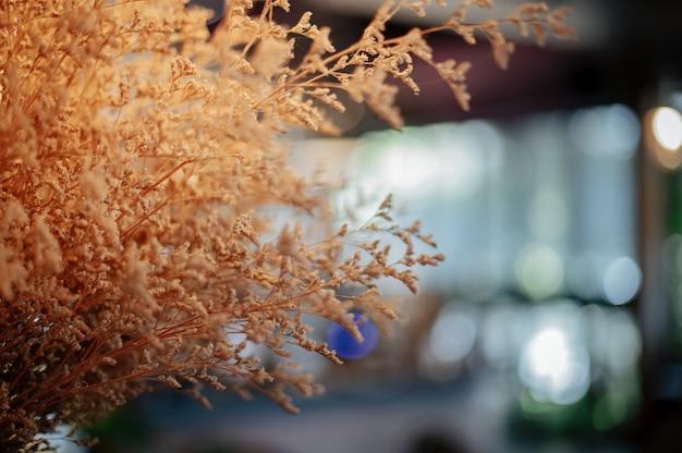 Um pequeno vaso de flores na cafeteria