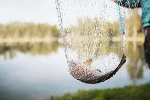 Um pescador mantém um peixe em uma rede com uma rede perto do lago