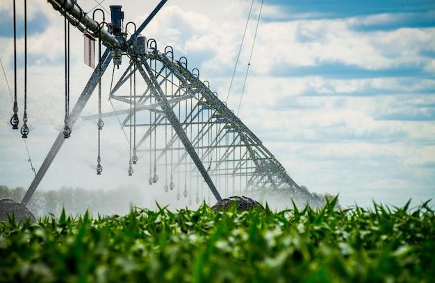 Um pivô de irrigação que molha um campo