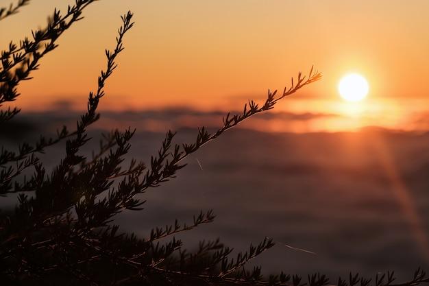 Um pôr do sol espetacular sobre as nuvens no parque nacional do vulcão teide em tenerife. excelente pôr do sol nas ilhas canárias.