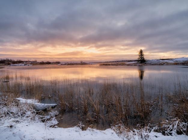 Um pôr do sol roxo mágico com uma árvore de natal solitária em uma ilha com um reflexo na água