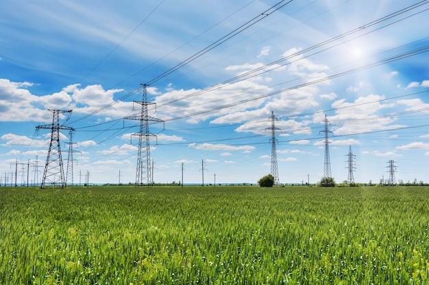 Um postes de energia de alta tensão no campo de trigo verde.