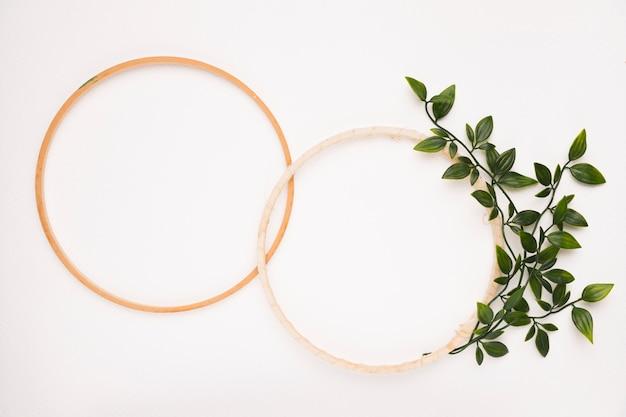 Um quadro circular de madeira vazio com folhas no pano de fundo branco