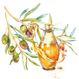 Um ramo de azeitonas verdes maduras é suculento derramado com óleo. gotas e salpicos de azeite. ilustração botânica e em aquarela