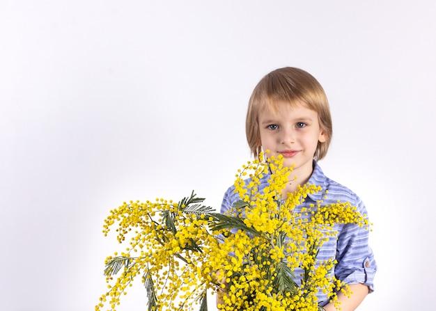 Um rapaz pequeno bonito está prendendo um ramalhete da mimosa amarela. um presente para a mãe. parabéns pelo dia 8 de março, dia das mães.