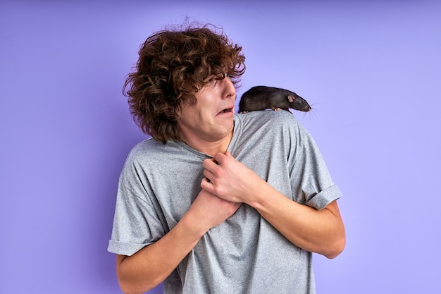 Um rato cinza curioso rastejando nos ombros de um homem, cara assustado e assustado está em choque
