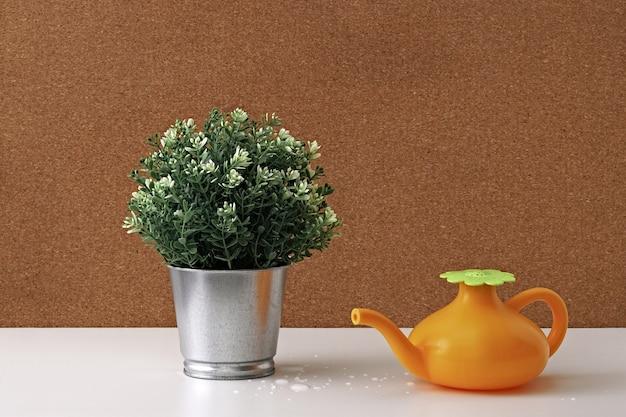 Um regador de brinquedo e uma planta verde em um pote de metal