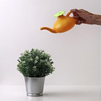 Um regador de brinquedo em mãos sobre um pote de metal com uma planta verde