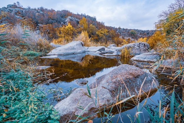 Um riacho rápido e limpo corre entre grandes pedras lisas e úmidas, cercado por pedaços altos e secos que balançam ao vento na pitoresca ucrânia