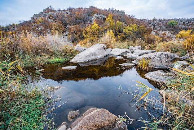 Um riacho rápido, raso e limpo corre entre grandes pedras lisas e úmidas cercadas por pedaços altos e secos