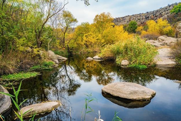 Um riacho rápido, raso e limpo corre entre grandes pedras lisas e úmidas, cercado por pedaços altos e secos que balançam ao vento na pitoresca ucrânia