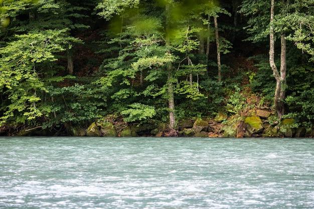 Um rio bonito corre entre as rochas