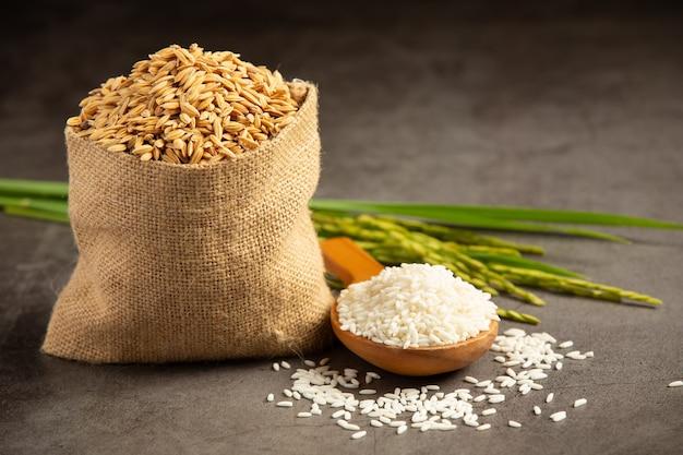 Um saco de sementes de arroz com arroz branco em uma pequena colher de madeira e planta de arroz