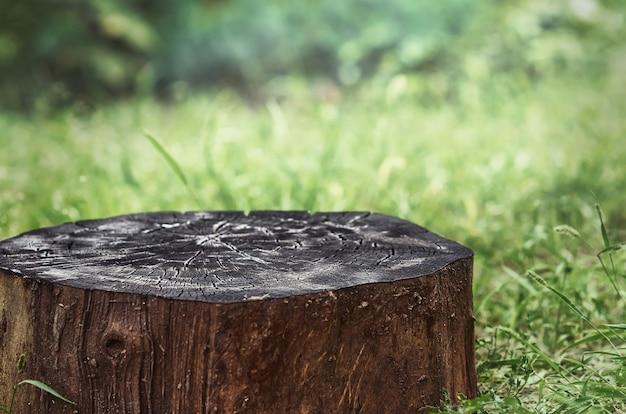 Um toco de madeira queimado. superfície de madeira vazia para publicidade de produtos