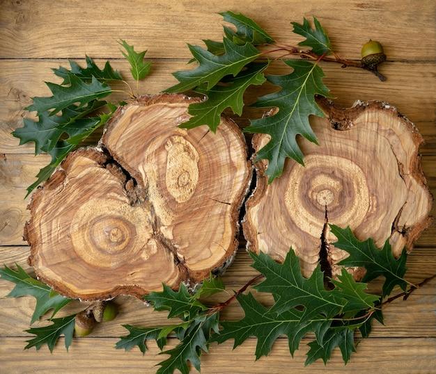 Um toco feito de uma árvore derrubada com anéis anuais em um fundo de pranchas de madeira com galhos e folhas de carvalho