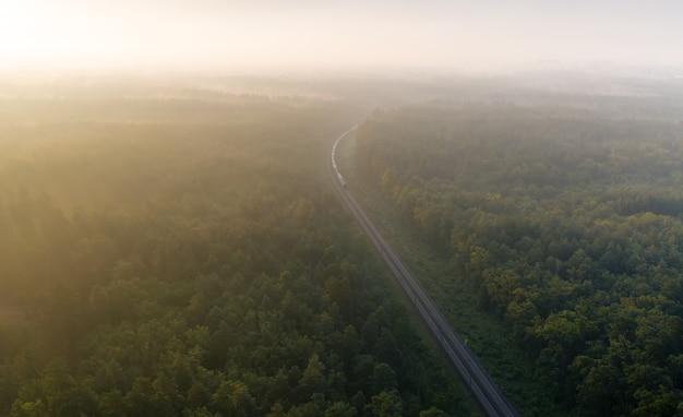Um trem de carga carregado com recursos entrega a carga pela floresta. paisagem de verão maravilhosa. pinheiros turva ao amanhecer de estragar ferroviário.