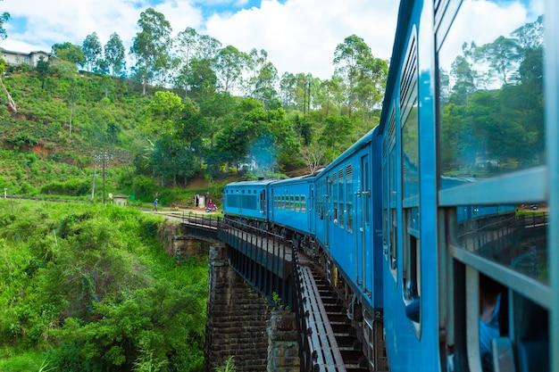 Um trem de passageiros azul se move pela selva do sri lanka.