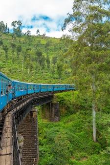 Um trem de passageiros azul se move pela selva do sri lanka