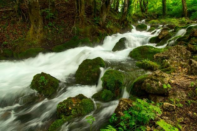 Um turbulento rio de montanha corre rapidamente por entre as pedras cobertas de musgo.