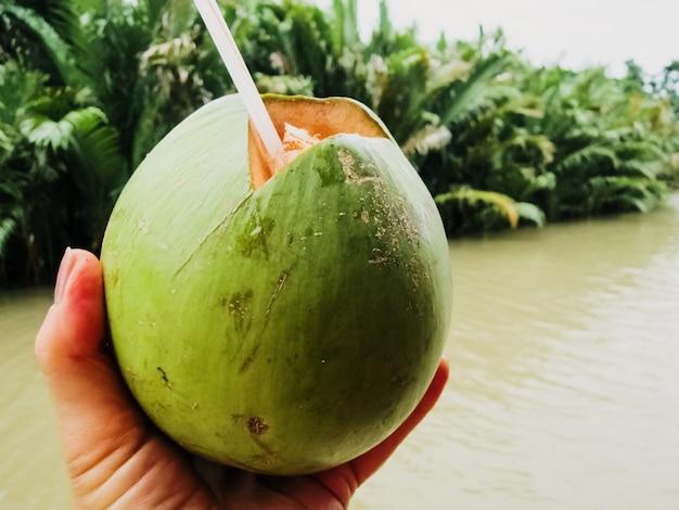 Um turista toma suco de água de coco com um canudo diretamente de um coco verde recém-colhido na ásia.