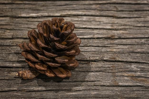 Um único cone simples pinheiro isolado na mesa de madeira com espaço de cópia