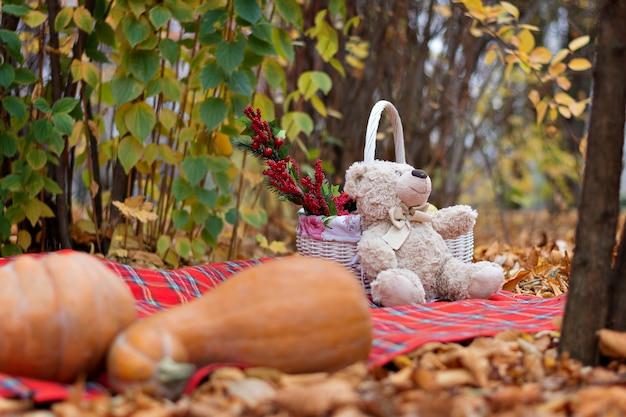 Um ursinho de pelúcia teddy senta-se em um tapete perto de uma cesta