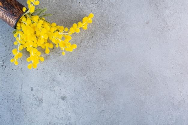 Um vaso de madeira cheio de flores frescas de mimosa em fundo cinza.