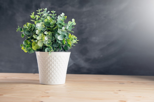 Um vaso de plantas em uma mesa de madeira e na superfície do tabuleiro