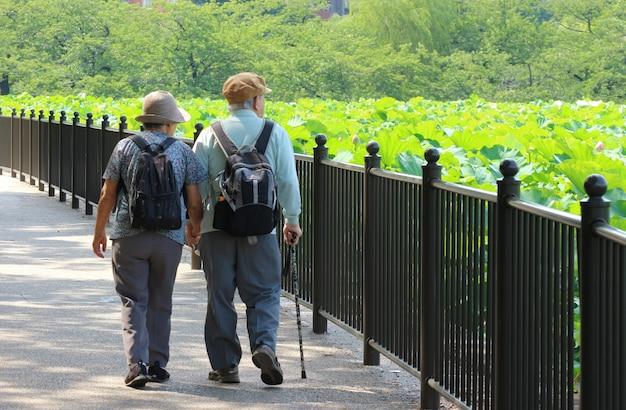 Um velho casal japonês alma gêmea de mãos dadas e caminhando juntos.