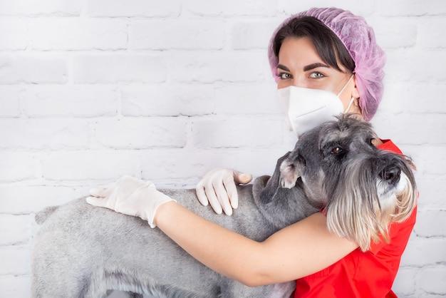 Um veterinário com uma máscara protetora com um cachorro