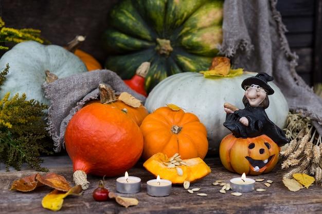 Uma abóbora, espinheiro, velas, folhas amarelas de outono, orelhas e uma bruxa em um vestido preto