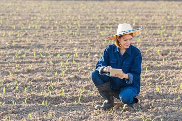 Uma agricultora asiática de jeans se senta e analisa as plantações que cultiva em uma fazenda de milho.
