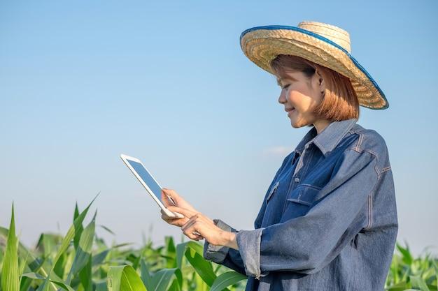 Uma agricultora, vestindo uma roupa de agricultor tradicional, está usando um tablet inteligente em uma fazenda de milho.