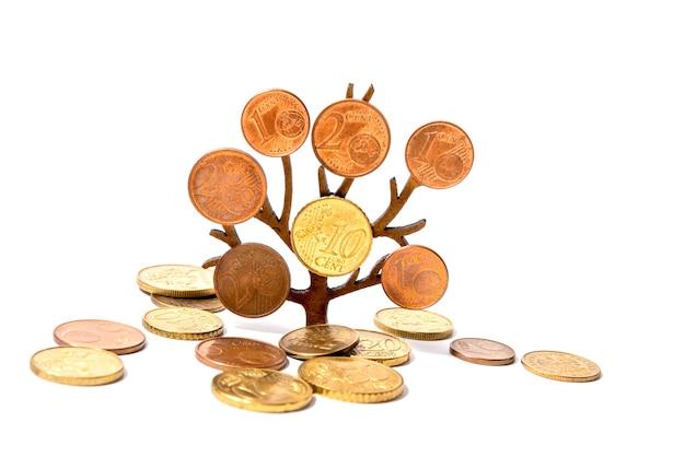 Uma árvore cresce com moedas em seus galhos em um fundo branco. conceito de investimento de crescimento de dinheiro.